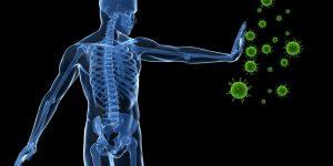 fortalecer o sistema imunológico