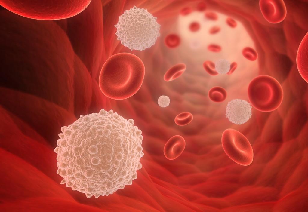 Alimentos Para Baixar os Níveis de Glicose Rapidamente