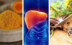 Os 10 Sucos Detox Para Desintoxicar o Fígado