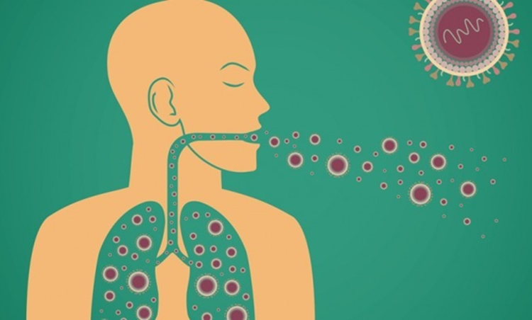 receitas caseiras para bronquite