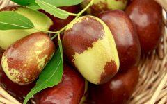 Os 7 Benefícios da Fruta Jujuba Para Saúde!