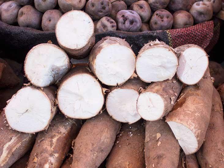 onde encontrar e como usar raiz de mandioca?