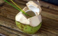 Os 5 Benefícios da Água de Coco Para Saúde!