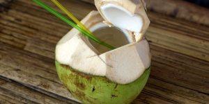 água de coco vs. leite de coco