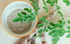 6 Benefícios da Moringa Oleiferaque Vão te Deixar de Queixo Caído!
