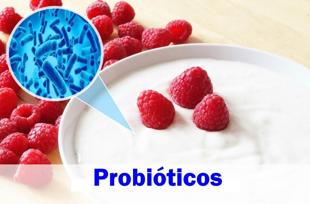 beneficios dos probioticos