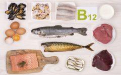 Os 12 Alimentos Ricos em Vitamina B12