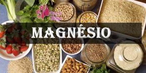 o que é o magnésio?
