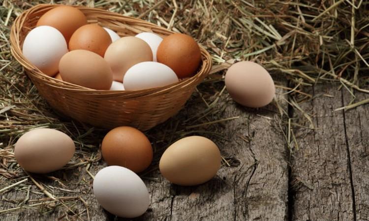 o ovo contém luteína e zeaxantina