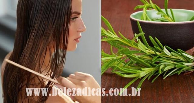 beneficios do alecrim para o cabelo