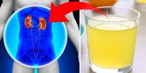 desintoxicar os rins
