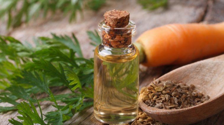 óleo de cenoura benefício para o cabelo