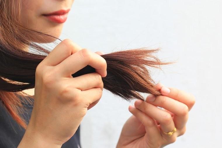 óleo de espinheiro mar para cabelo