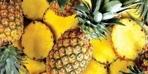 o que é o abacaxi?