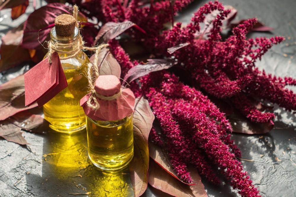 óleo de amaranto beneficio