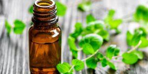 o que é o óleo de hortelã pimenta?