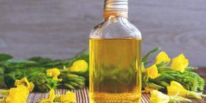 oleo de primula para cabelo beneficios