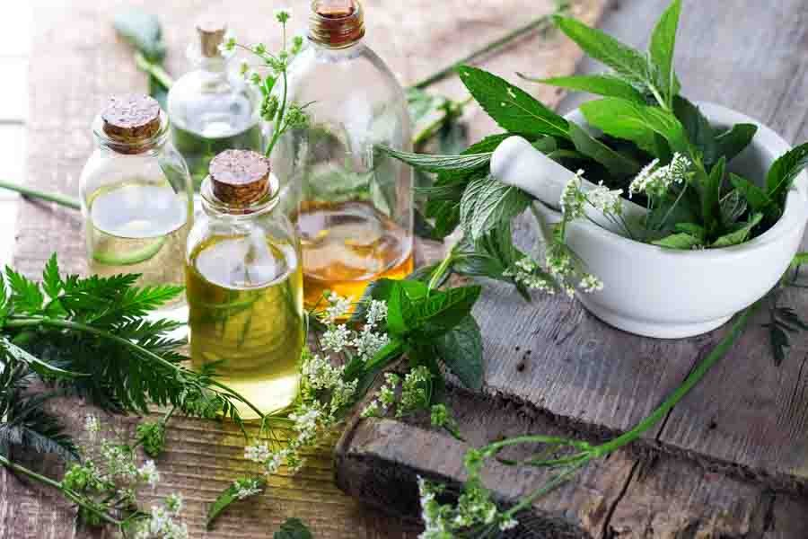 beneficios do oleo de manjerona