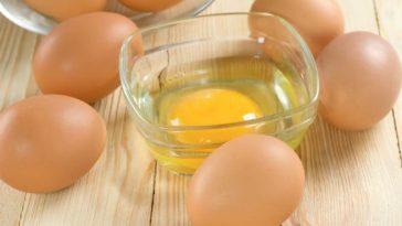 mascaras caseiras com ovo para cabelo