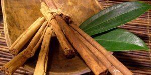 chá de louro e canela para queimar gordura