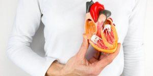 quais os benefícios das nozes para saúde cardíaca?