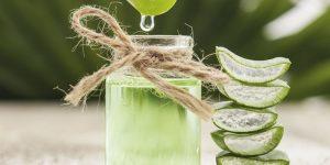 receita caseira de aloe vera para eliminar varizes