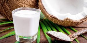 beneficios do leite de coco para saude