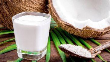 benefício do leite de coco
