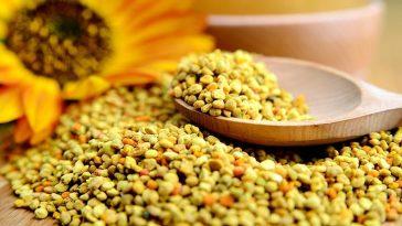 benefícios do pólen de abelha para saúde