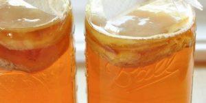 benefícios do chá kombucha para saúde