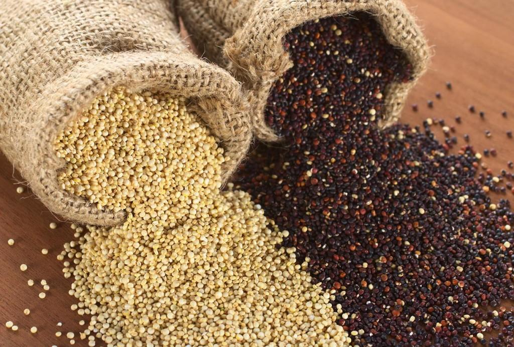 quinoa para perder peso