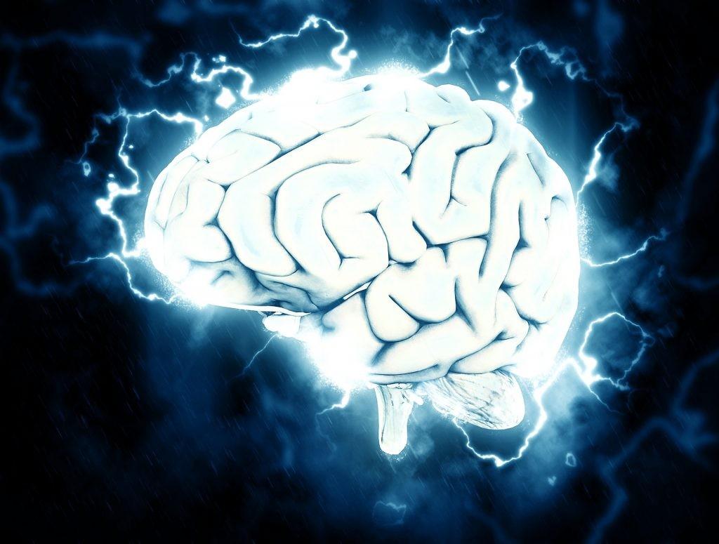 epilepsia causas