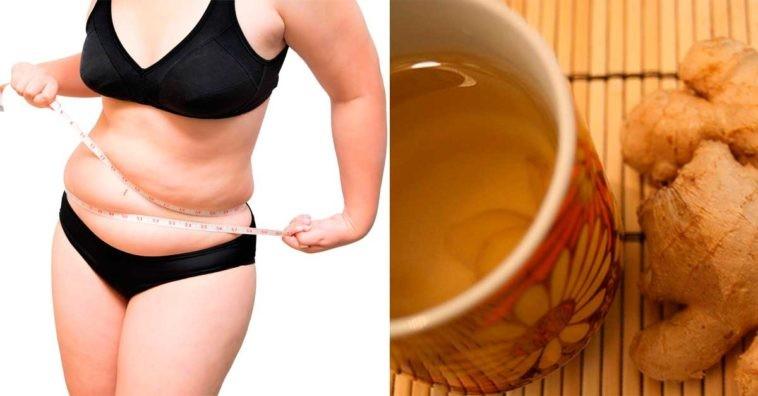 agua de gengibre ajuda derrete a gordura da barriga em 3 dias