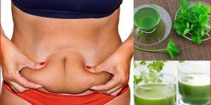 bebida caseira para eliminar toxinas e queimar gordura