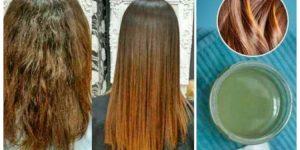 mistura com vinagre de maçã para cabelo