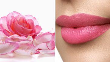receita com petalas de rosa para ter lábios rosados