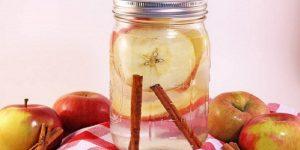 água de maçã e canela para perder peso