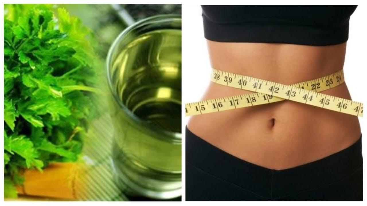 chá de salsa para perder peso