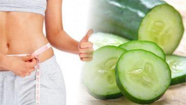 dieta do pepino para perder peso