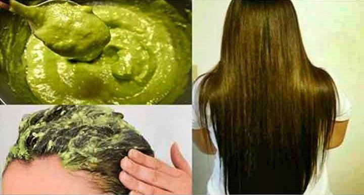 Mascara Caseira de Abacate Para Acelerar o Crescimento do Cabelo