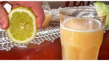 batido de maçã e limão para perder peso