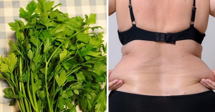 como usar a salsa para perder peso