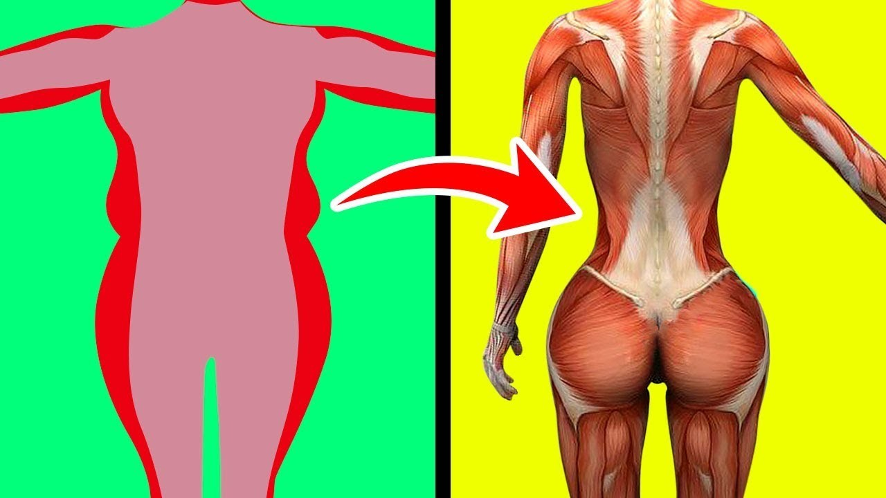 vinagre de maça para eliminar gordura nas costas