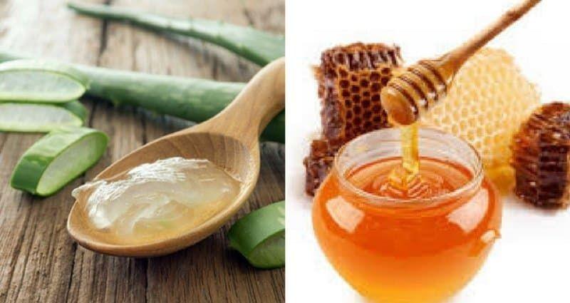benefícios da babosa com mel