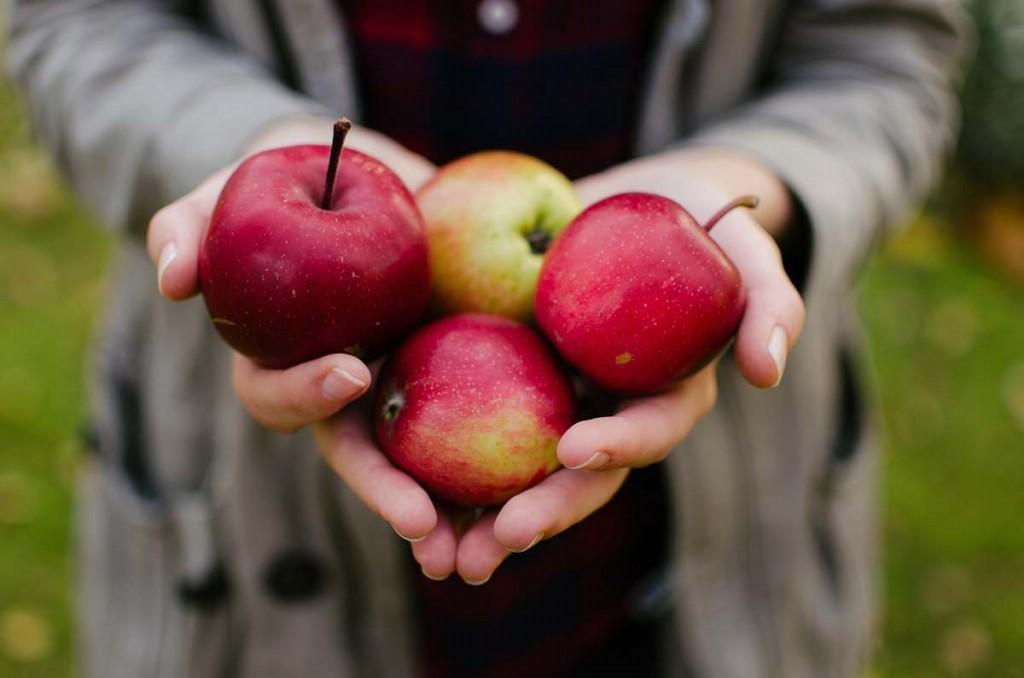 maças vermelhas e um das frutas vermelhas