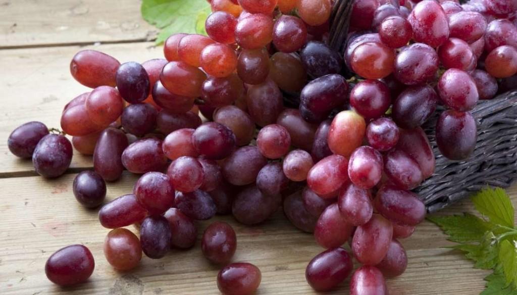 uvas vermelhas e uma das frutas vermelhas